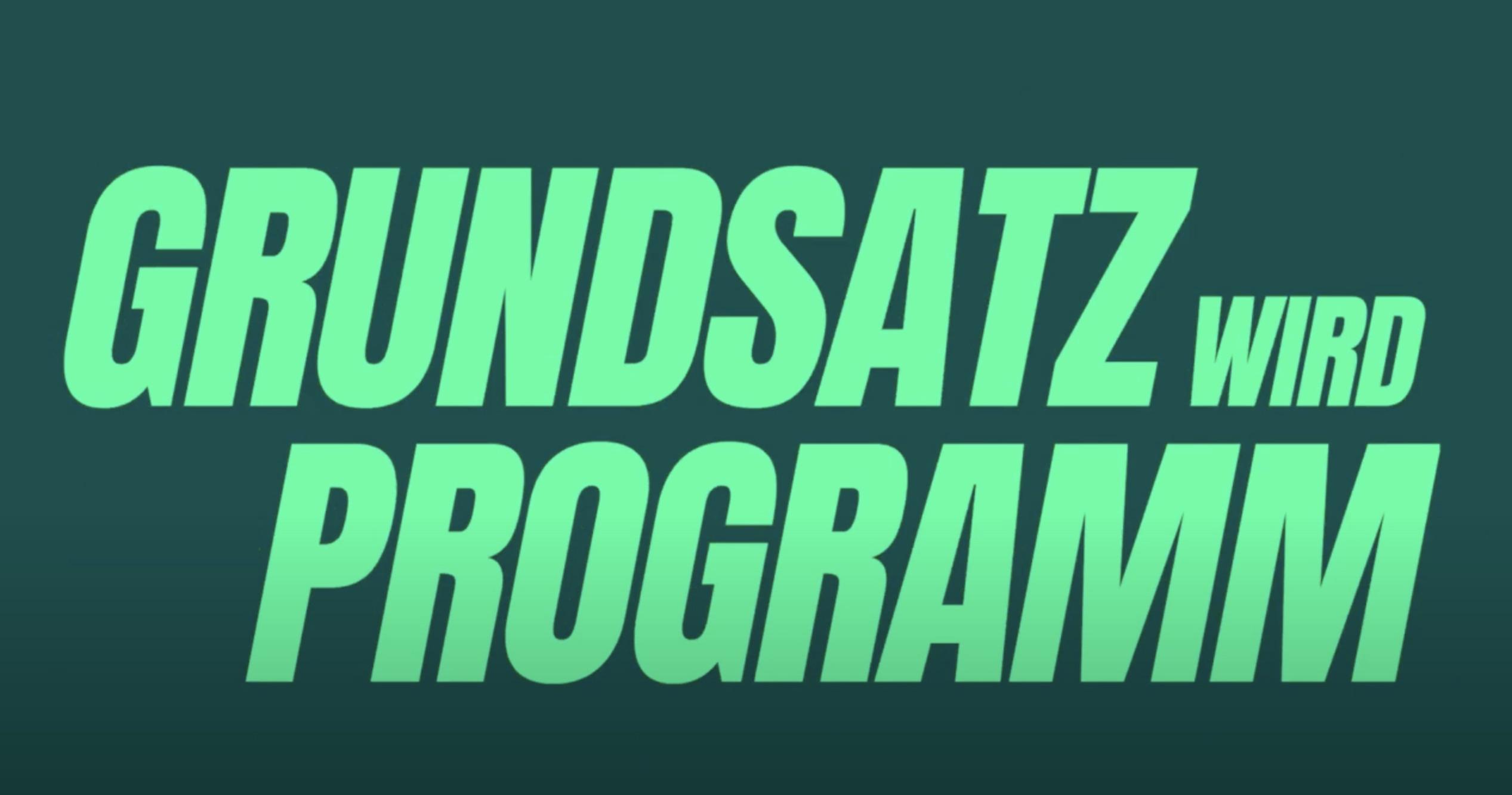 Das neue Grundsatzprogramm